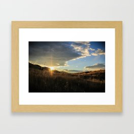 Grasslands Framed Art Print