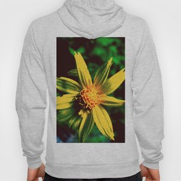 Vintage Yellow Flower Hoody