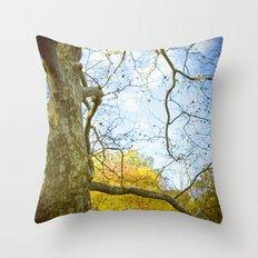 Oak Run Throw Pillow