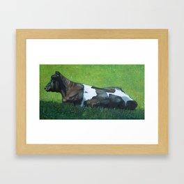 Holsten Dairy Cow Lying in Sunny Pasture Framed Art Print