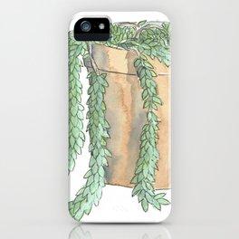 Sedum Morganianum iPhone Case