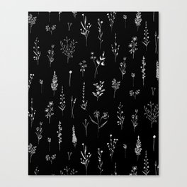 Black wildflowers Canvas Print