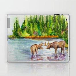 Isle Royale National Park Laptop & iPad Skin