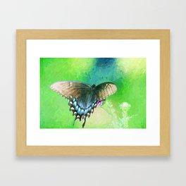 Butterfly by Kerri Lane Framed Art Print