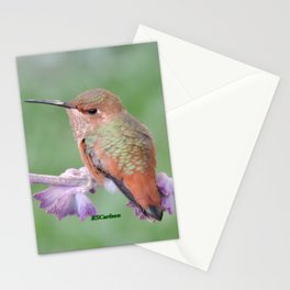 DO NOT Raid My Patch of Sage Stationery Cards
