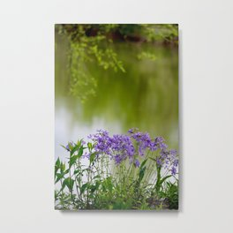 Sweet William on the Bourbeuse River at Devil's Back Floats Metal Print