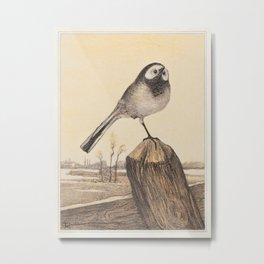 Theo van Hoytema - Kwikstaart op paal Metal Print