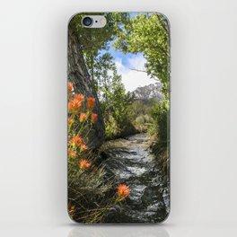Wild Flower Creek Eastern Sierra  5-18-20 iPhone Skin