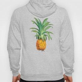 Pineapple pattern Hoody