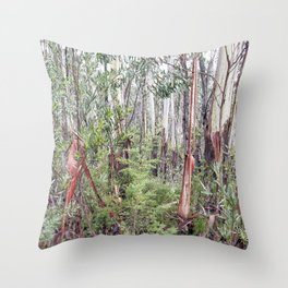 Shipley's in Mist Throw Pillow