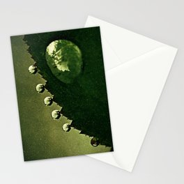 Leaf Drops Stationery Cards