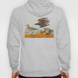 Golden Plover John James Audubon Scientific Birds Of America Illustration Hoody