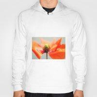 poppy Hoodies featuring Poppy by Falko Follert Art-FF77