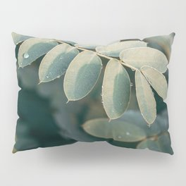 Layers Of Green #3 Pillow Sham
