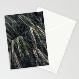Fields of grass Stationery Cards