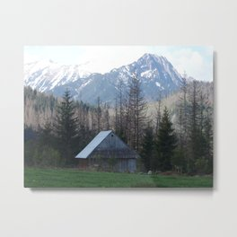 In the montains Metal Print