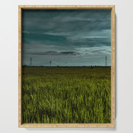 rice field Serving Tray