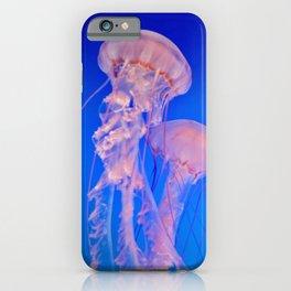 Bloom of Jellies iPhone Case