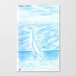 Egret, Treasure Island Canvas Print