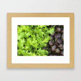 Spicy Mix Framed Art Print