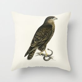 Common Buzzard (BUTEO BUTEO) illustrated by the von Wright brothers Throw Pillow
