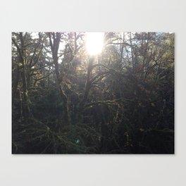 """Alien Sun and Jungle"".  (2) Nature Series #4 Canvas Print"