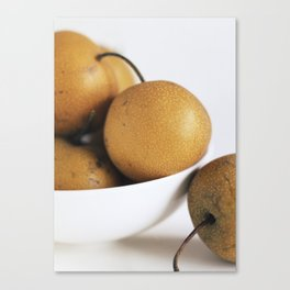 Asian Pears Canvas Print