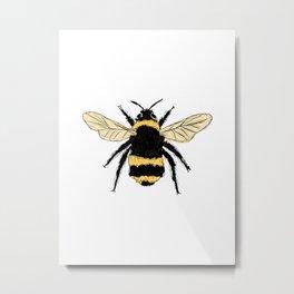 Bumble bee illustration Metal Print