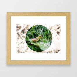 Hop Framed Art Print