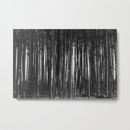 Trees In A Row Metal Print