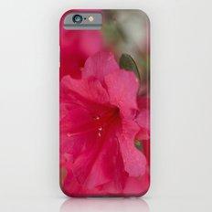 Pink Azalea  Slim Case iPhone 6s
