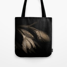 Desires of the Heart Tote Bag