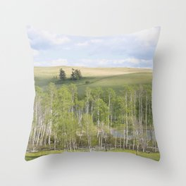 Lake and trees landscape Throw Pillow