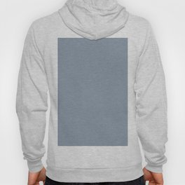 Mid Tone Sky Blue Solid Color Pairs To Valspars 2021 Color of the Year Blissful Blue 4005-3C Hoody
