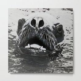 Urban Pop Art Sea Lion Metal Print