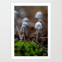 mushrooms Art Prints featuring Mushrooms by Michelle McConnell