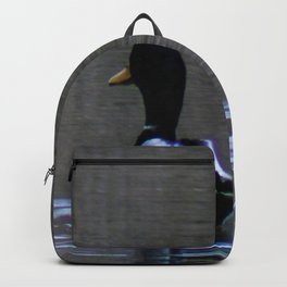 Backview Backpack