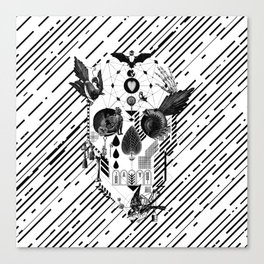 Abstract Skull B&W Canvas Print