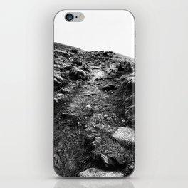 Urban Decay 6 iPhone Skin