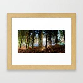 Winter Sunlight. Framed Art Print
