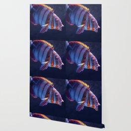 Clown Fish (Color) Wallpaper
