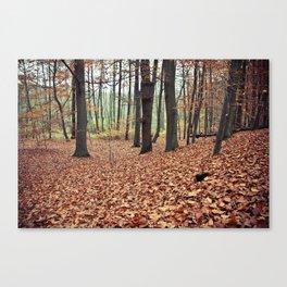 Wald Canvas Print