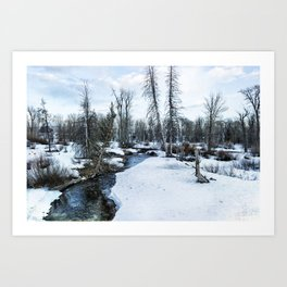 Dreaming of Cottonwood Creek Art Print
