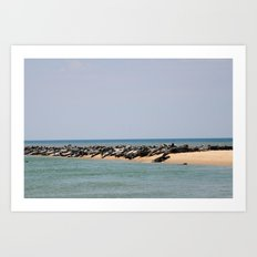Island of Seals Art Print