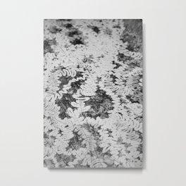 Snail Trail Metal Print