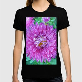 Aster with Crab Spider T-shirt