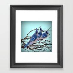 THREE AMERICAN BLUE JAYS ART WINTER ART Framed Art Print