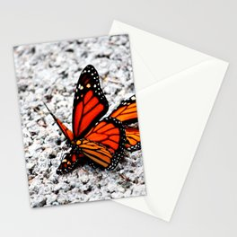Butterflies Mating Stationery Cards
