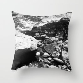 On an afternoon walk Throw Pillow