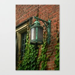 Light and Ivy Canvas Print
